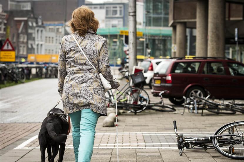 SCP | Het publieke leven is nog niet goed toegankelijk voor mensen met een lichamelijk beperking